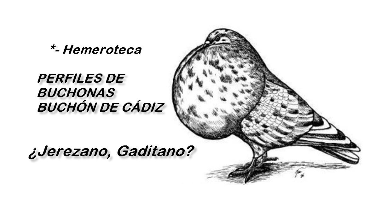 lapalomeria-jerezano-gaditano-perfil