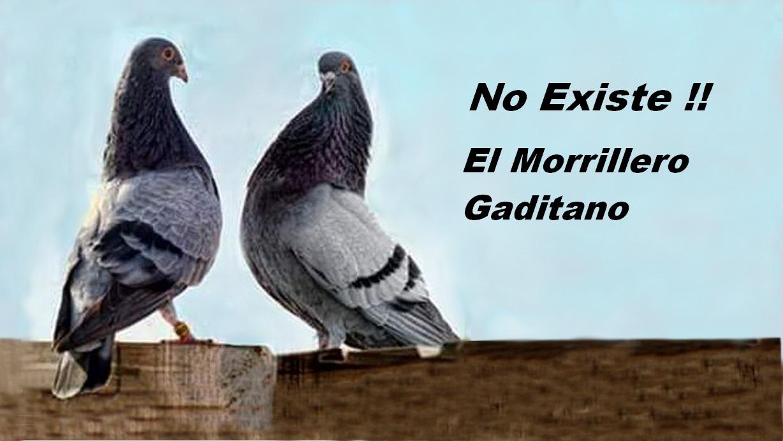 lapalomeria-no.existe-morrillero-gaditano