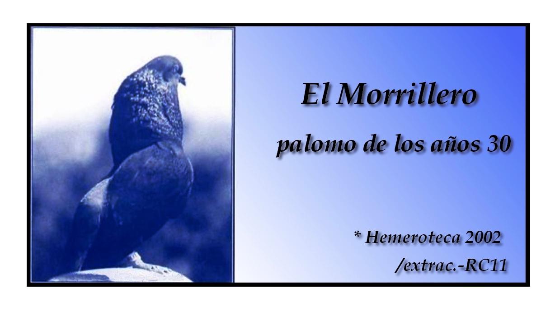 lapalomeria-morrilleroalicantino-año30