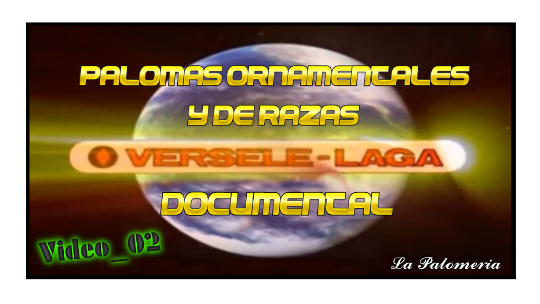 lapalomeria-vl-video02