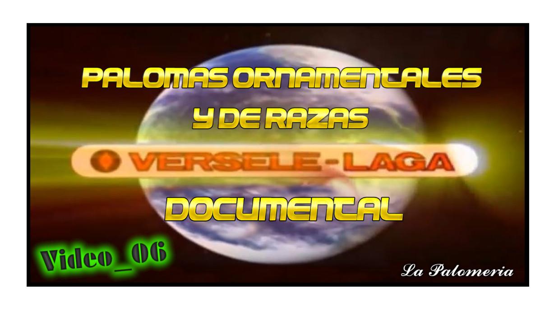 lapalomeria-vl-video06