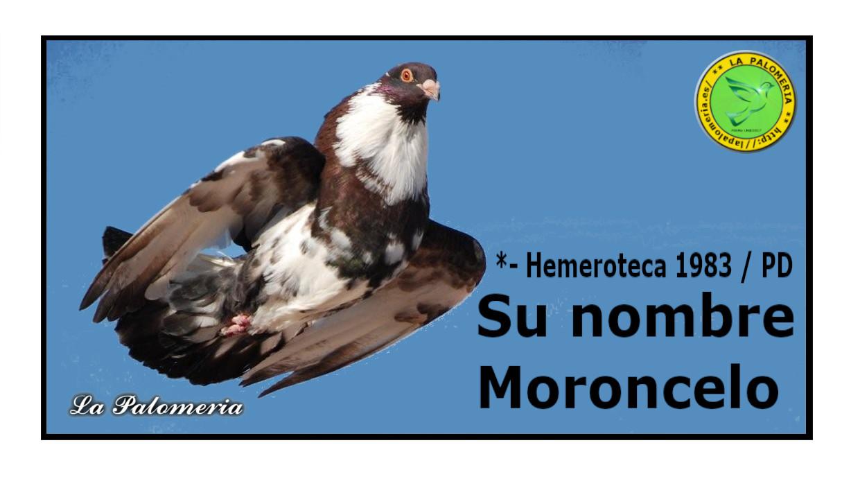 lapalomeria-nombre-moron-celo