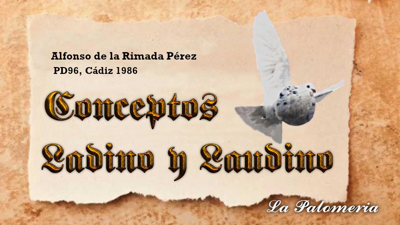 lapalomeria-ladino-larimada86