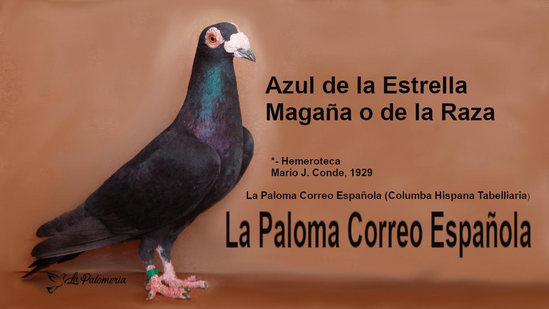 lapalomeria-paloma-magaña
