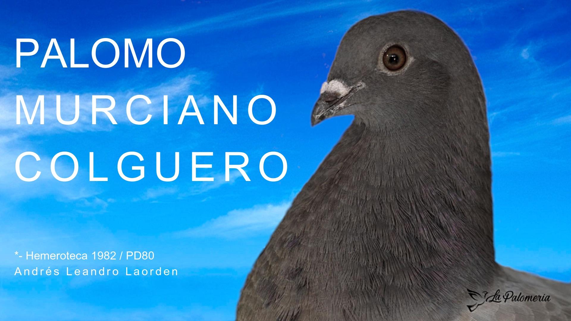 lapalomeria-murciano-colguero